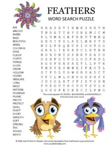Feathers Word Search Puzzle