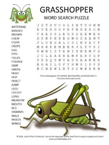 grasshopper word search puzzle