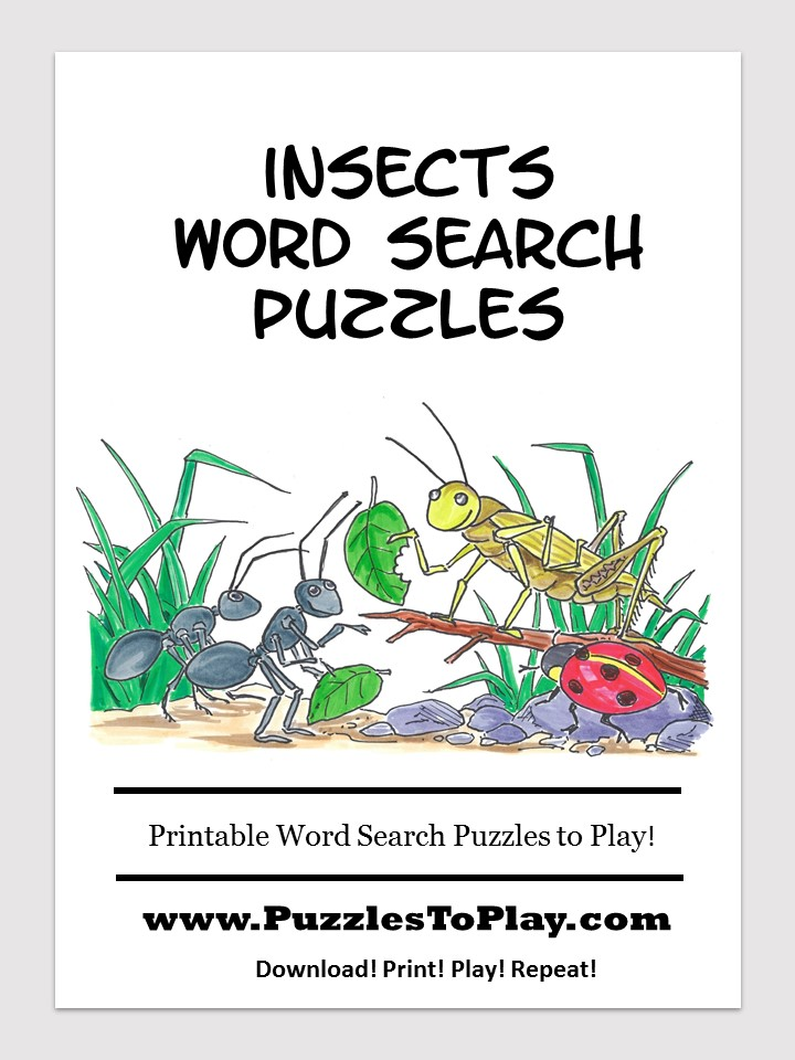 insects word search puzzle book