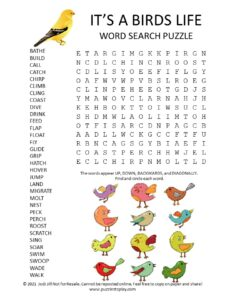 Bird Word Search Puzzle