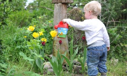 12 Epic Garden Crafts for Kids: Grow and Green