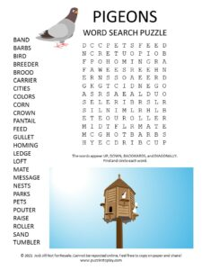 Pigeons Word Search Puzzle
